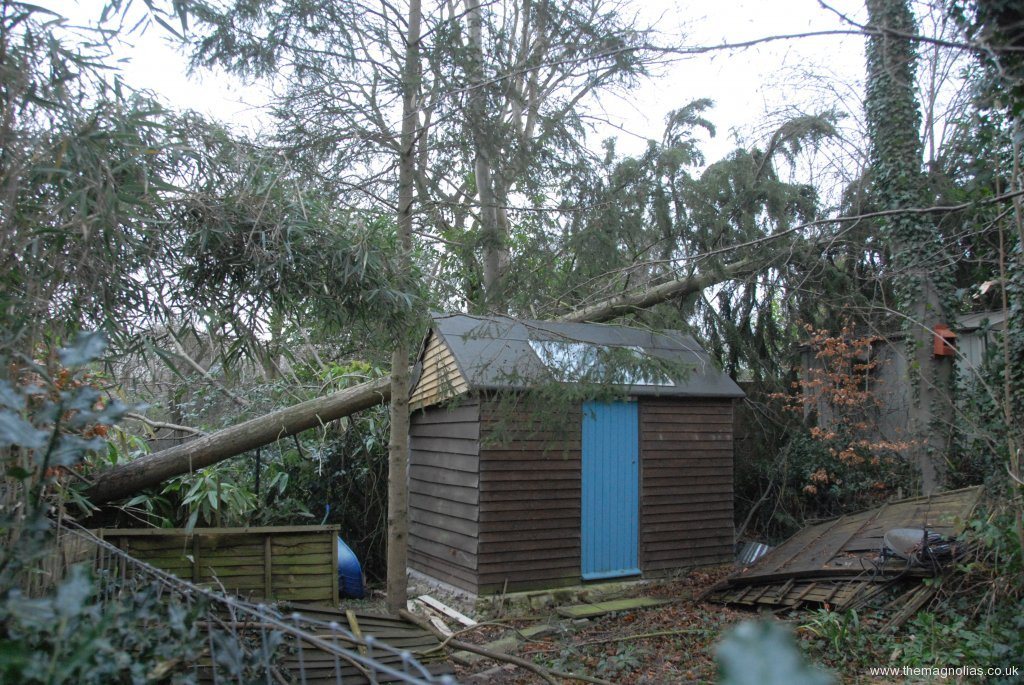 Over Roy\'s shed