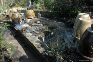 Pond dry and most plants removed