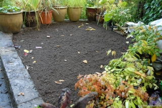 Raised bed ready for planting