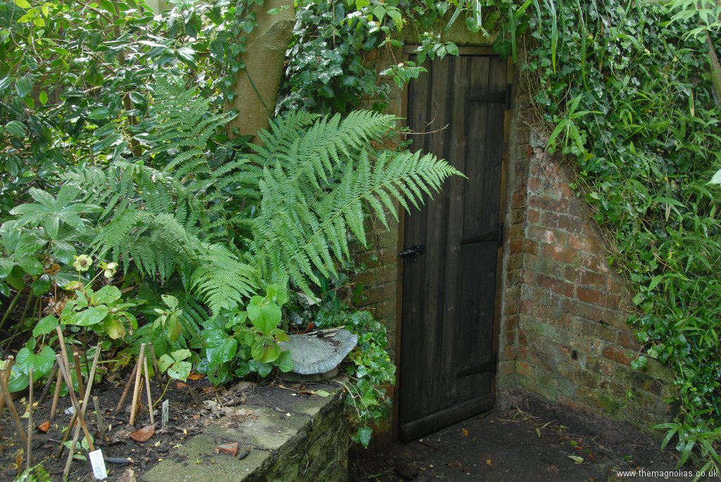 New Air-raid Shelter Door