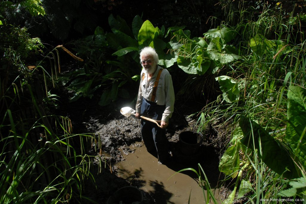 A little way into desilting