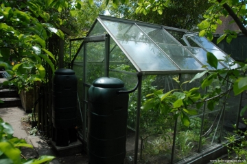 New greenhouse 2