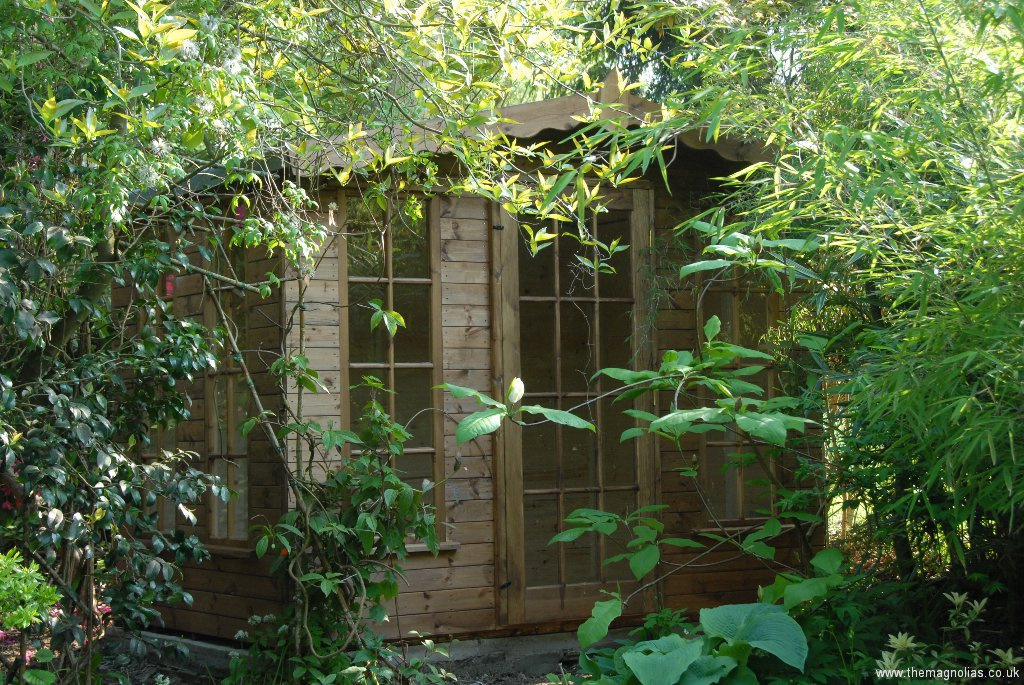 Shed Replacement