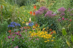 New Summer Garden