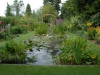 View North over Waterlily Pond